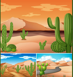 three scenes with cactus plants along the road vector image vector image