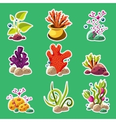 Cartoon underwater plants and creatures vector