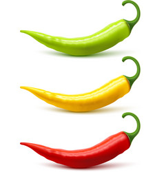 Chili pepper pods set realistic shadow vector