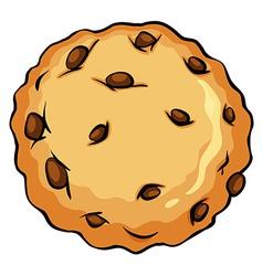 Crunchy brown cookie vector