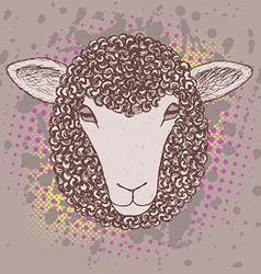 Sketch sheep poster vector