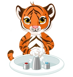 Little tiger washing hands vector