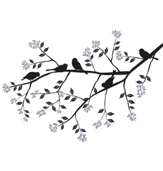Birds on the blooming branch during vector image