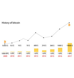 Bitcoin price history infographics of changes vector