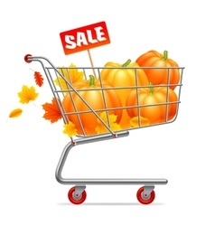 Shopping Cart with Pumpkins vector image