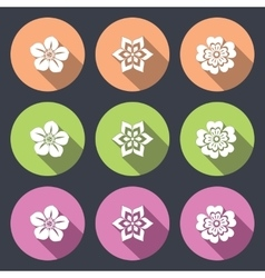 Flower icon set petunia daisy orchid primula vector
