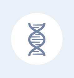 Dna chain icon over white gene research genetics vector