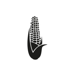 Corn on white background vector