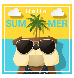 hello summer background with dog vector image vector image
