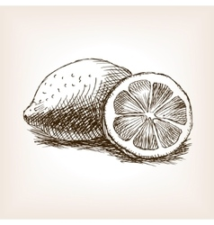 Lemon fruit hand drawn sketch style vector image vector image