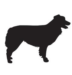 Australian Shepherd Silhouette vector image vector image