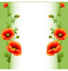 Background with bright flowers poppy vector