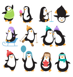 Funny christmas penguins characters vector