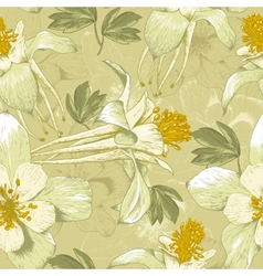 Seamless Floral Background with White Flowers vector image vector image