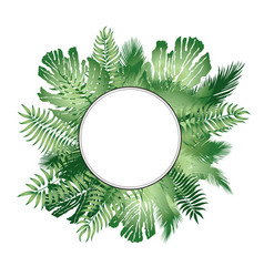 floral background summer leaves flourish border vector image