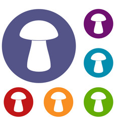 Fungus boletus icons set vector