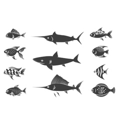 Grey fish silhouettes set vector
