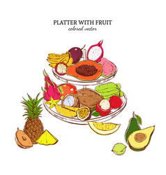 Hand drawn exotic fruits template vector