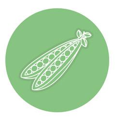 String bean fresh isolated icon vector