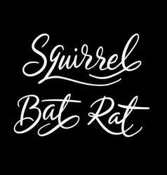 Squirrel animal hand written typography vector