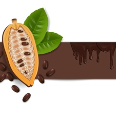 Background with cocoa beans vector