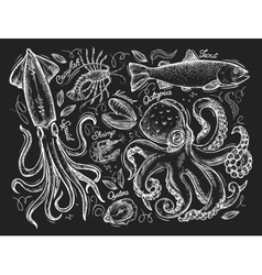 Seafood or marine mammals hand drawn sketch vector