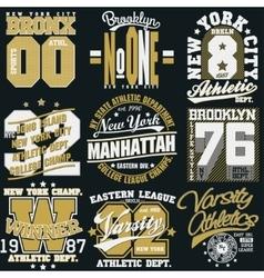 New York t-shirt graphics vector image vector image