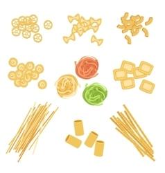 Classic Italian Pasta Types Set vector image