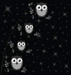Owl family tree stars vector