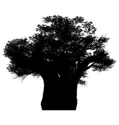 African baobab vector