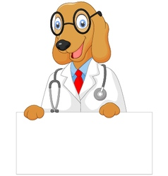 Cartoon doctor dog holding blank sign vector