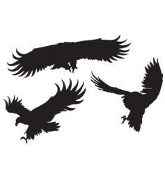 Eagles silhouettes vector