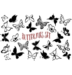 Seamless Backgrounds Butterflies vector image vector image