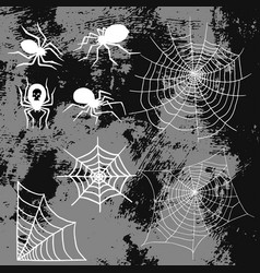 spiders and spider web silhouette spooky nature vector image