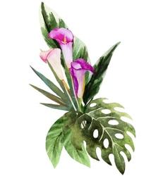 Tropical watercolor flowers vector