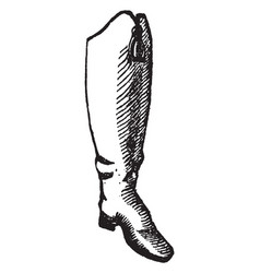 Hessian boot vintage engraving vector