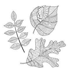 Leaf doodle vector image