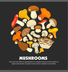 organic ripe mushrooms grown at forest promotional vector image vector image
