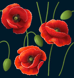 poppy pattern black vector image