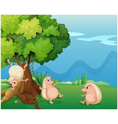 Three playful molehogs near the old tree vector