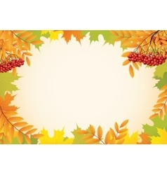 Abstract autumn background with maple leaves and vector