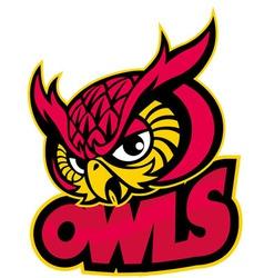 Owls head mascot vector