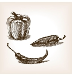 Peppers hand drawn sketch style vector image vector image