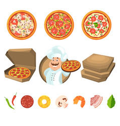 Fast food for party or italian lunch pizza with vector