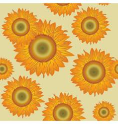 seamless with sunflowers vector image
