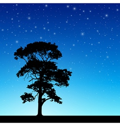 Tree with Night Sky vector image