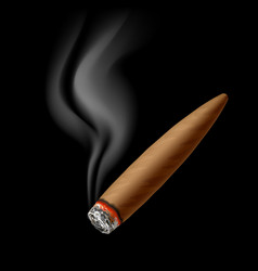 Cigar with smoke vector image vector image
