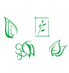 set of leaves symbols vector image vector image
