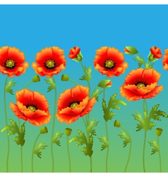 Bright background with flowers curb poppy vector