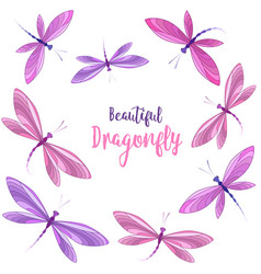 Dragonflies in flight vector